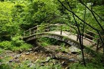 本溪绿石谷森林公园一日游、天然氧吧