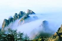 崂山+崂山太清宫景区亲近自然一日游 (VIP纯玩团 游海上仙山 寻崂山道士)