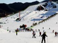 新疆中旅之南山水西沟白云雪场(滑雪纯玩)一日游|无购物店,天天发团