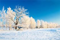 冬季坝上草原摄影北京出发木兰围场+乌兰布统坝上草原玩雪双座休闲四日游