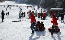 济南出发 济南金象山滑雪一日游 赠送旅游人身意外险下单前请提前询问余位