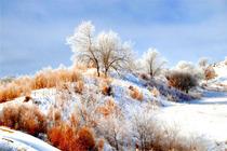 约惠|亚布力雪乡休闲3日游|赠送人身意外险|一路向北|去北方找到那一抹白色