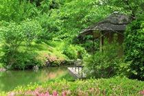 扬州(住途居国际露营地、9米营地式大床房车、双早、双人润扬湿地森林公园门票)