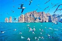 端午假期山东蓬莱长岛神奇海岛游-万鸟岛-月亮湾4日海岛之旅