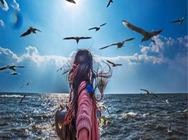 大连旅顺10大景点+出海观光一日游、20人精品团含午餐、100%真纯玩无购物