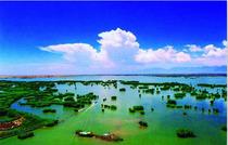 明星产品!☀☀♥沙湖、影视城、岩画一日游.贴心服务.明星导游