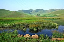 北京至丰宁坝上不和陌生人拼团六人高品质纯玩2日游,送草原娱乐中心门票。