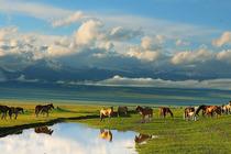喀纳斯+禾木+伊犁深度7日环游 新疆高端旅游线路 尽赏新疆精华景点!