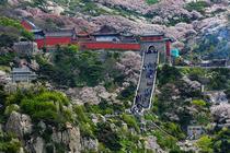 济南 泰山 曲阜3日高铁游暖冬出游 山水圣人景点路线——拜圣人,登山祈福 ,感受圣人故乡魅力 ,美食餐