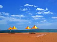 大连金石滩八大景点+出海钓鱼喂海鸥+快艇登地质公园一日游 每人赠一份海参捞饭