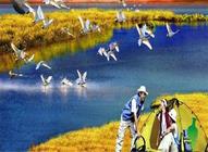南昌出发鄱阳湖国家湿地公园、观候鸟、四不像(麋鹿)一日游(内湖)