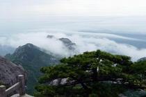 特价天堂寨、白马大峡谷、飞龙峡奇幻漂流2日游 含天堂寨、白马大峡谷门票
