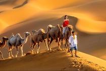 含机票0自费新疆高品团.五彩滩+吐鲁番+鄯善+库姆塔格沙漠+天池8日休闲游