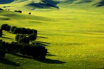乌兰布统、贡格尔草原、达里湖、白音敖包、阿斯哈图石林3日游(赤峰起止)