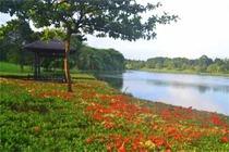 包团游/东莞出发松山湖趣味拓展游戏、野炊农家乐、梦幻百花洲亲子一天游