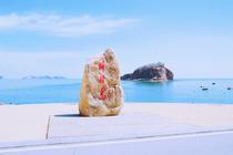 大连市内十大景点一日游  大连棒棰岛风景区+威尼斯水城+渔人码头 纯玩无购物