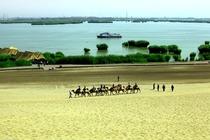 市区定点接车!沙湖、西部影视城品质纯玩一日游!赠沙湖游船+景区环保车!