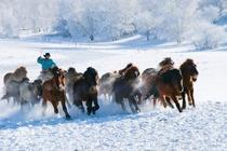 乌兰布统千里冰封,万里雪飘乘坐越野车感受北国场景