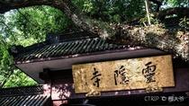 上海+苏州+杭州4日自由行·双飞 沪进杭出 三城连游 不走回头路