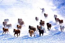 春节乌兰布统:滑雪篝火,看万里雪原赏雾凇,越野车带你畅游乌兰布统迷人冬季!