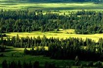 经棚起止白音敖包、阿斯哈图石林一日游