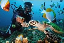 中国国旅、蜈支洲岛一日游、海景乐园、碧海蓝天、含门票+船票+导游+定点接送