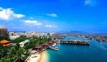 海南椰子林度假养生公寓(陵水店) 给父母不一样的冬天 海鲜+疗养+海滩+美食