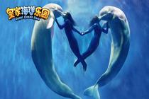 抚顺皇家极地海洋世界 直通车 (海洋世界+动物世界+极地世界)