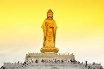 宁波到舟山普陀山一日游(60岁以上和学生价格) 普陀山一日游 海天佛国一日游