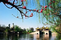 华东五市、扬州、乌镇5日双高跟团游春节出游大促纯玩无购物,全景江南,品扬州早茶,赏鼋头樱花、苏州园林