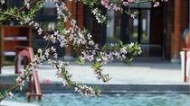 南京3日自由行(5钻)·双飞·汤山绿地御豪酒店+自选温泉门票