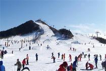 青岛金山滑雪直通车1日游 青岛最近会好的滑雪场地 放飞冬日的激情2H022