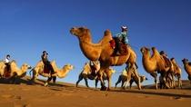 鄂尔多斯5日自由行·沙漠+草原 酒店任选