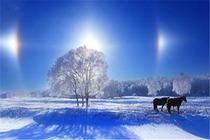 冰雪之旅三日游 木兰围场 塞罕坝森林公园  乌兰布统蛤蟆坝 传统蒙古铜锅涮