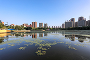 沈阳3日自由行·丰富航班+各星级酒店任选 尝东北美食 感受历史名城