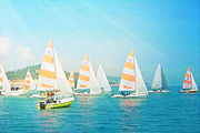 厦门亲子深度游七彩环岛路游、地龙抓蟹 、赶海挖花蛤 、帆船出海、赶鸭子一日游