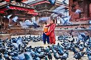 尼泊尔自由人专属定制游5-10日可选,加德满都+博卡拉+奇特旺/滑翔伞暑期游