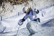 张家口太舞滑雪场 往返班车(当日上午去,次日下午返)+雪票4小时(自带板)