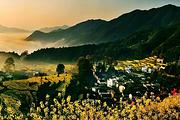 春季赏花线=<婺源、篁岭、景德镇、瑶里3日游>=双岭赏花、纯玩团、深度精品游