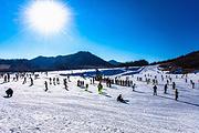 神农架滑雪+莫愁村2日纯玩平日不限时滑雪(含雪板、雪靴、雪仗)