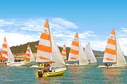 厦门旅游游艇帆船出海体验1小时丨出海垂钓丨娱乐聚会丨偶遇白海豚丨含定点接送