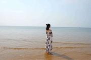 滨海风情♥拒绝走马观花♥定远舰♥崂山♥消费透明♥山东青岛烟台双飞5日
