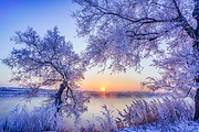 沈阳故宫-帅府-雾凇-冬捕-长白山-魔界-雪乡-亚布力滑雪-哈尔滨双动7日游