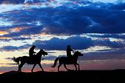 呼伦贝尔草原5日自由行🔥黄金牧场+白桦林+边防风景线(住蒙古包+草原骑马)