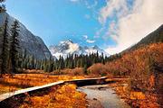 堪比九寨沟的好去处-白马王朗二日游<赏雪景、住白马寨精品五星藏寨>送意外险