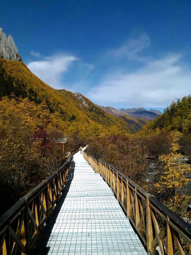 四川带你游:塔公草原,新都桥,丹巴旅游包车