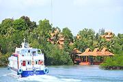 新加坡民丹岛来回船票(儿童/淡季+旺季来回/经济舱)