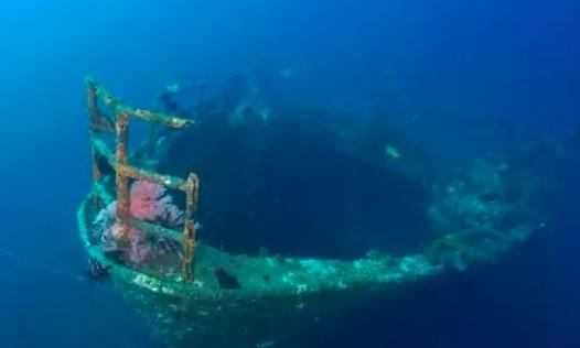印尼巴厘岛图蓝本潜水考证4天3晚(接送+住宿+AOW考证+餐饮送保险)