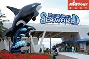 蜜柚旅行【东京周边亲子一日游】鸭川海洋世界看虎鲸表演+海萤岛观光