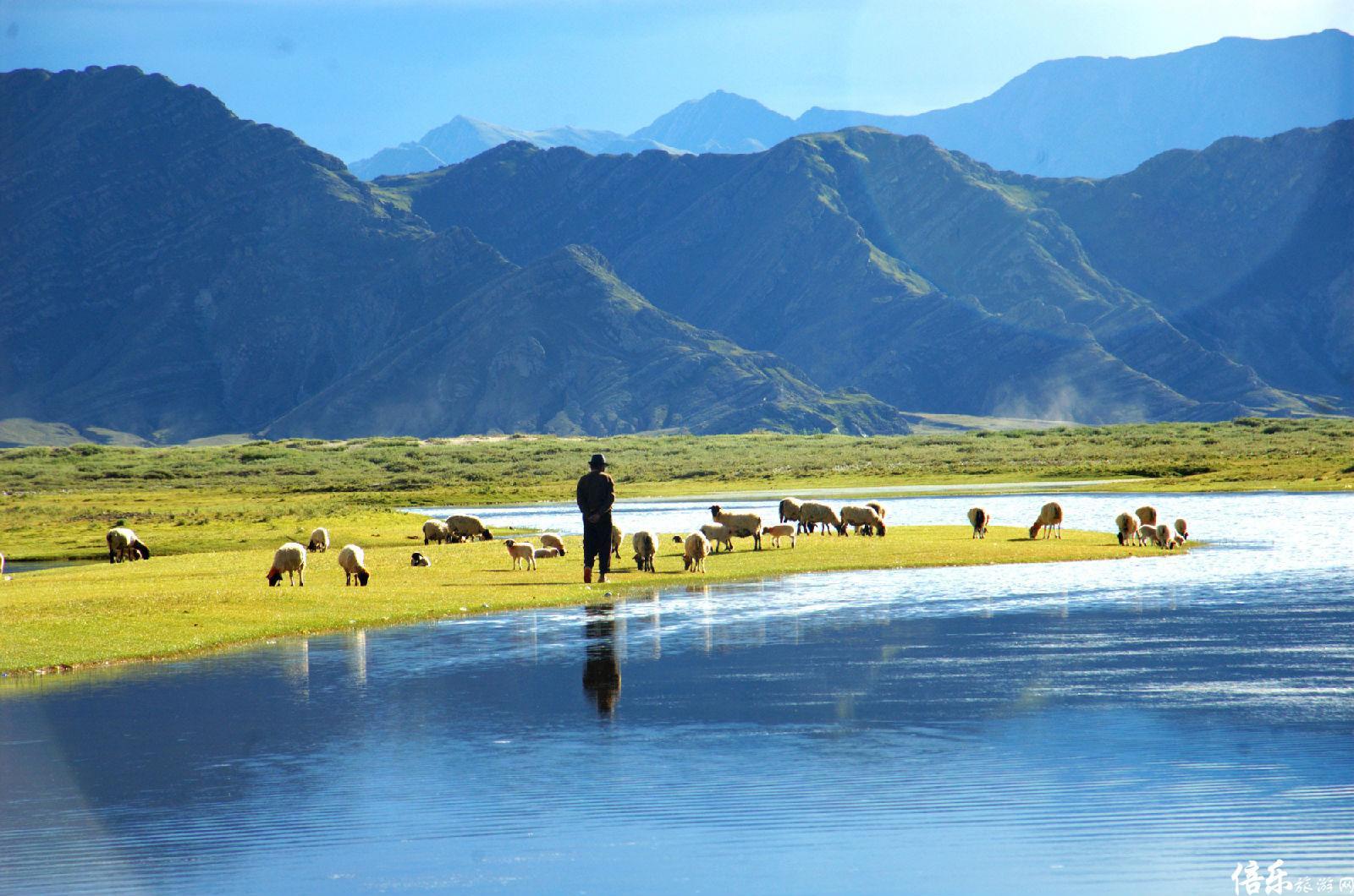 千山之巅, 万水之源,有着传统的文化信仰,是藏羚羊的摇篮,牦牛的乐园。